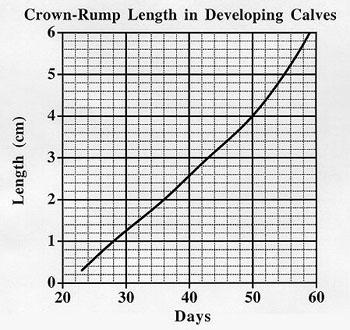 Crown Rump Graphs